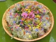 salade_folle_aux_fleurs